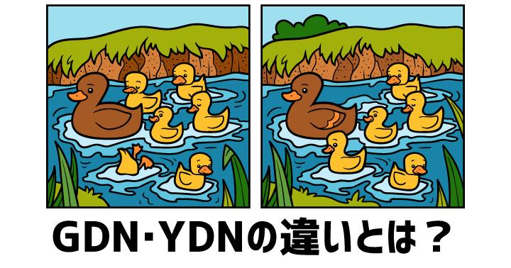 【入門】GDN・YDNとは?特徴や違いをわかりやすく解説します