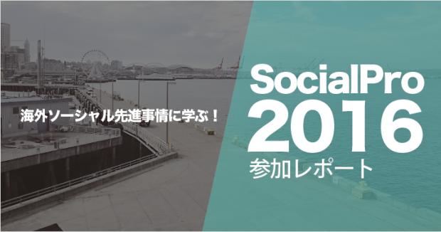 socialpro-2016-report_header